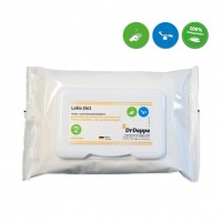 Hände- und Flächendesinfektionstücher | Lotio 2in1 Flowpack | 48 Tücher im Flowpack